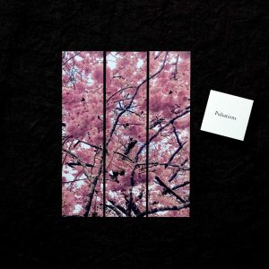 Marque-page Pulsation fleurs roses