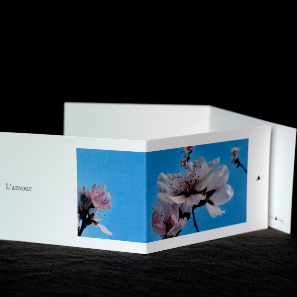 Carte postale L'amour