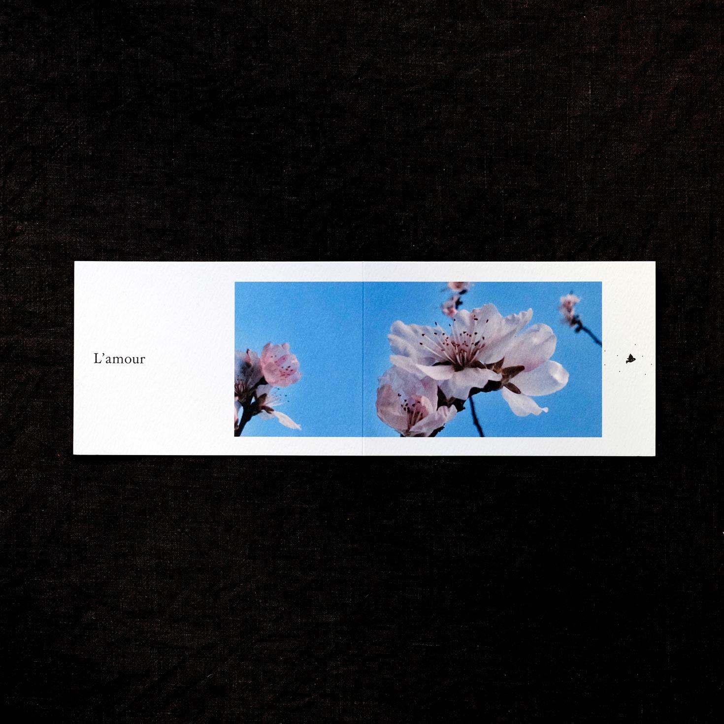 Carte Postale « L'amour »