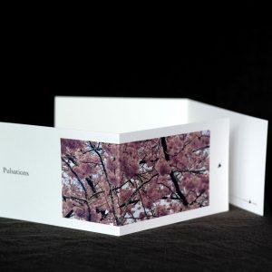 Carte postale Pulsation