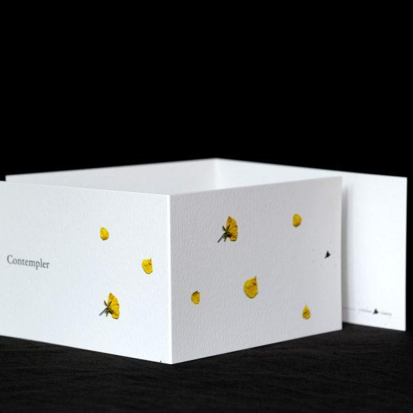 Carte postale Contempler, fleurs jaunes