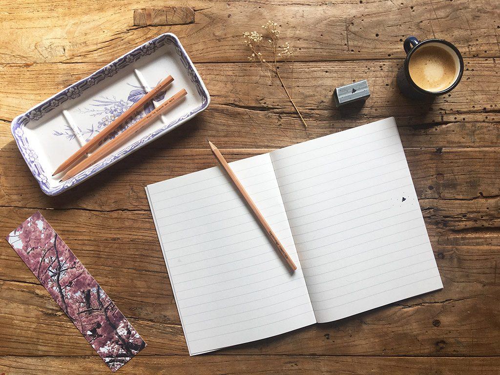carnet oiseau comète et crayon