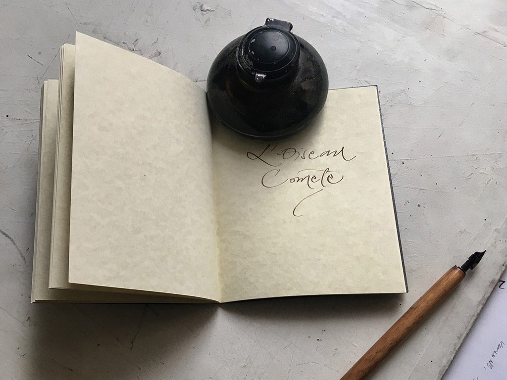 Encrier carnet oiseau comète