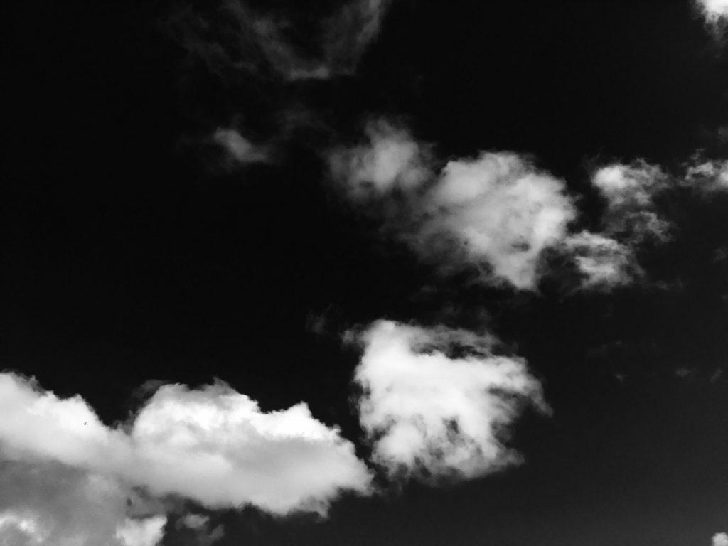 Ambiance oiseau comète