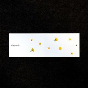 Carte Postale « Contempler »