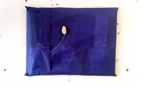 paquet-cadeau-loiseau-comete-900x900